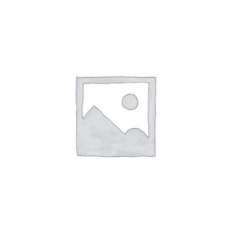 Toripaikan sähköpiste (110003)
